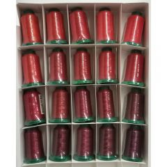 Exquisite 20 Shades of Red Embroidery Thread Set
