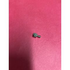 Janome Replacement Screw for Convertible Freemotion Foot