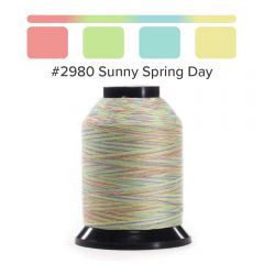 Grace Finesse Variegated Quilting Thread Sunny Spring Day #2980